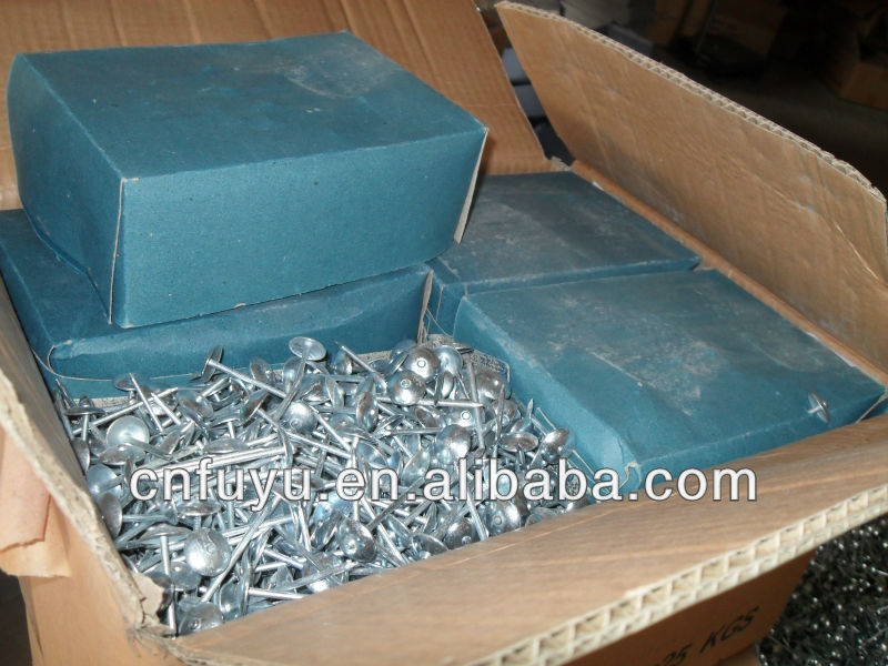 E.G.umbrella twisted shank roofing nails /Fuyu Metal Factory