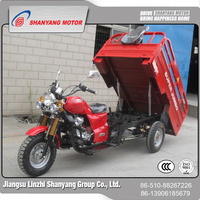 Hot Cheap New Best Selling 200cc Gasoline 3 Wheel Trike Motorcycle with canvas roof