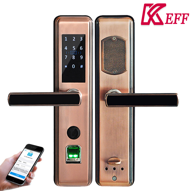 Card Password china korea access control digital fingerprint door lock with remote function