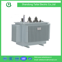 toroidal 3 phase duplex winding coil structure and power distribution usage electrical transformer S13 oil type 10KV 30-2500KVA