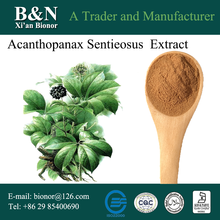 Natural Manyprickle Acanthopanax Root Extract Siberian Ginseng Extract Powder