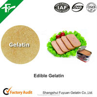 Halal Beef Gelatin Used in Meat Canned/Food Grade Gelatin Powder