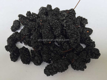 Organic Traditions Dried Organic Black Mulberries