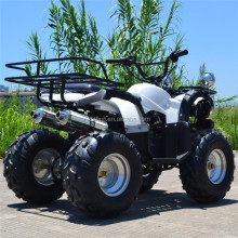 2017 cheap price mini bull 2 stroke ATV quad