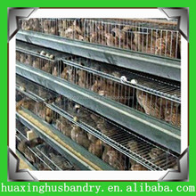 plastic poultry transport cage