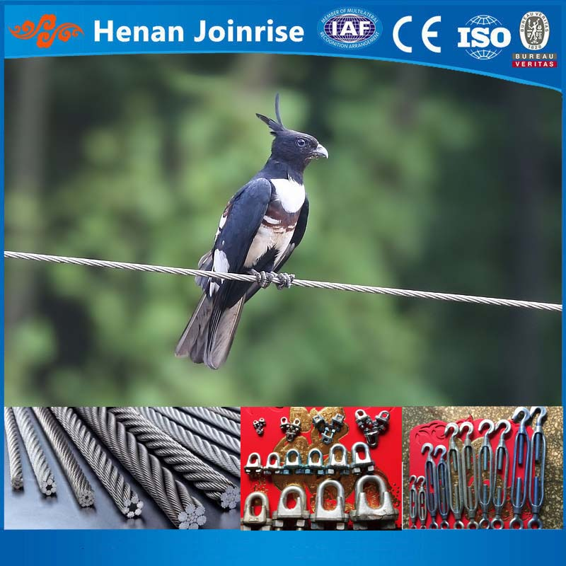 Double Twist Rope steel wire/ three twist rope steel wire/ point contact steel wire