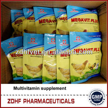 GMP Veterinary Factory Poultry Medicine Multivitamin WSP