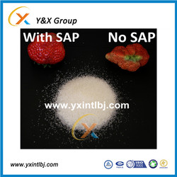 buying bulk price polymer crystals vegetablts and fruits sap
