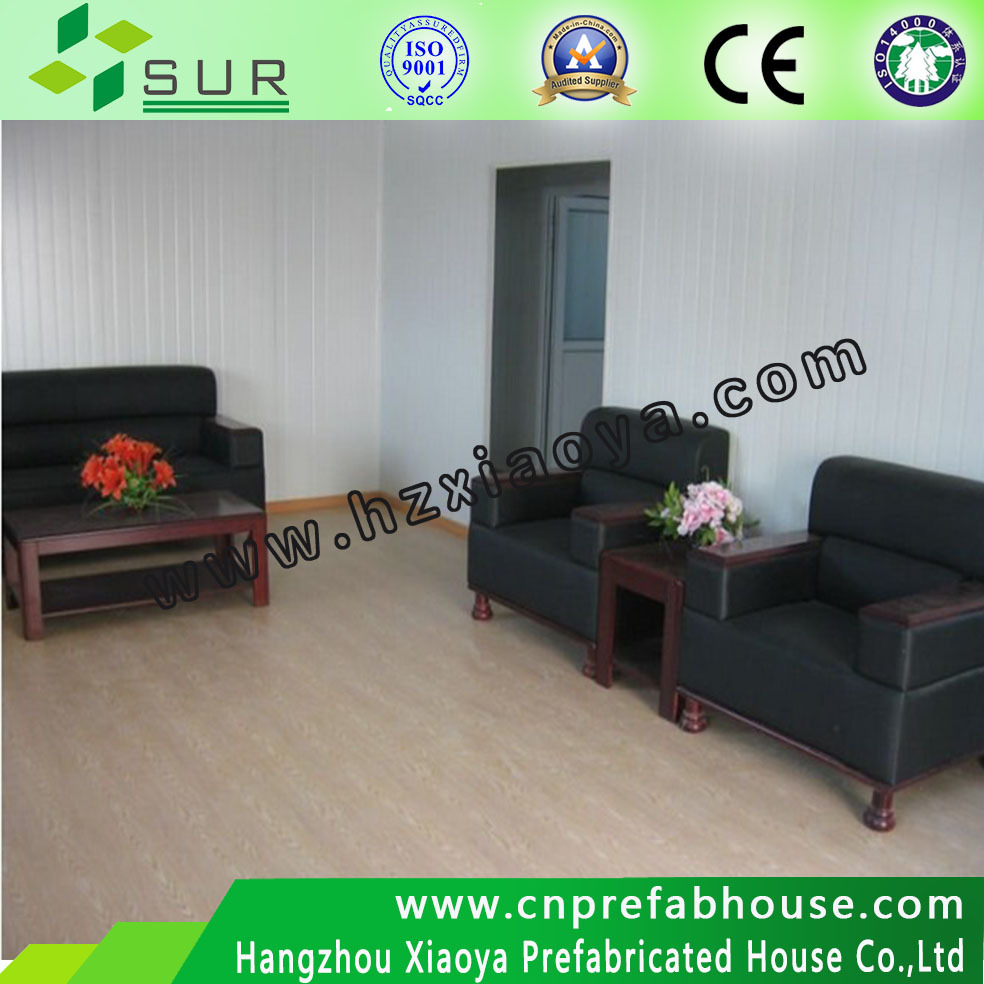 Special design Container house for cold area,Russia, Movable Container House for office,dormitory