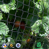 Anti Bird Netting for Garden Fruit Crop Protection - Lots Of Sizes Available (12m x 20m)