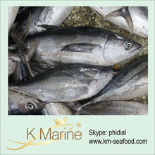 China Cheap Frozen Yellowfin Tuna Price lot number#kmw4003