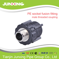 pe100 hdpe pipe fitting male thread socket/coupling