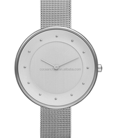 Silver women violet watches 2013
