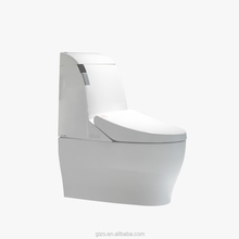 Wholesale price hospital hotel automatic flush compositing smart toilet