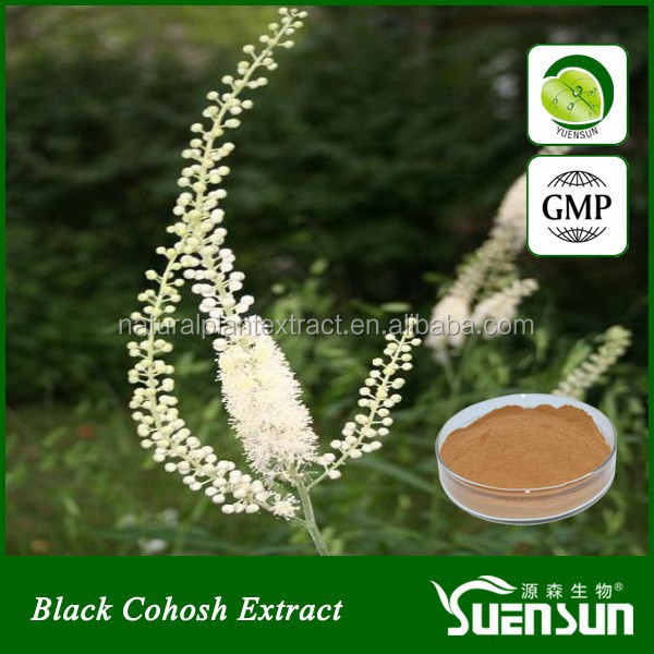 GMP certificated black cohosh extract powder black cohosh extract