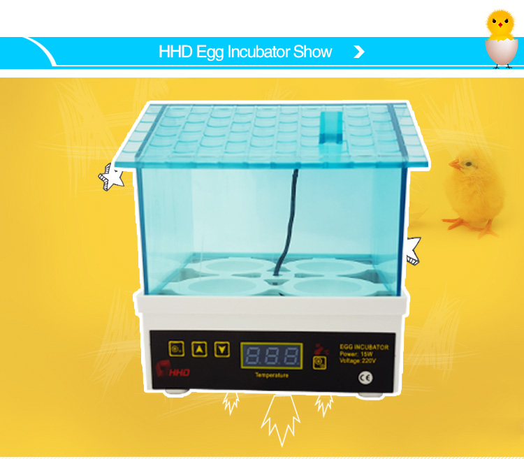 Newest Design Wholesale Holding 4 Chicken Eggs mini chicken egg incubator for Kid's Gift