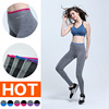 New Seamless Ladies Under Wear Fitness Yoga /Sports Tight Leggings Pants For Women K266