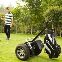 Environmental cheap self balance electric golf mini car with golf bag carrier