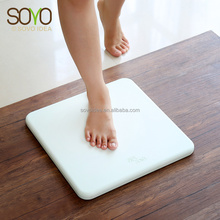 SGS Certificate Hot sale new tide super quick dry diatomite bath mat Natural Diatomaceous Earth mat