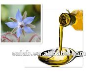 Hot Product 100% Natural Essential Oil Organic Borage Seed Oil