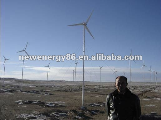 10KW automatic PLC controlled variable torch wind turbine with CE certificate