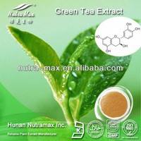High Quality Green Tea Powder Extract 90% 98% Polyphenols--Kosher&Halal