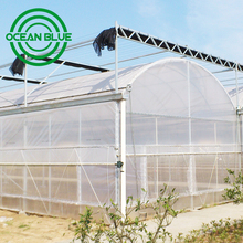 15 Years warranty hydroponic grow tent agriculture greenhouse for sale