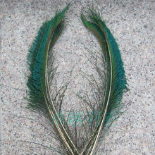 Peacock Feathers Craft Feathers of Cheap Wholesale