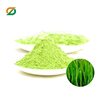 High Quality Good price organic barley juice green powder in bulk