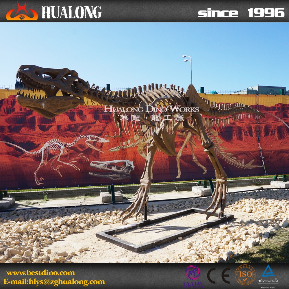 High Quality Artificial Dinosaur Skeleton For Indoor Playground