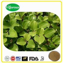 high quality sarsaparilla extract /Smilax china p.e/10:1Sarsaparilla Extract powder