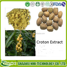 Free sample croton extract 10:1/ crotonoside