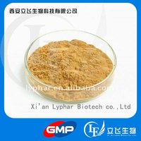 Competitive price for angelica sinensis root extract