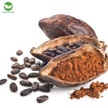 100%Natural pure raw cocoa powder/Cocoa powder/Natural cocoa powder