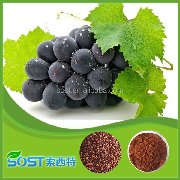 Factory supply grape seed extract 95% OPC oligomeric proanthocyanidins sell grape seed extract alcohol 95