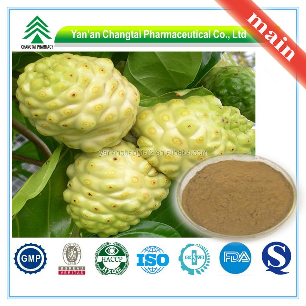 GMP Factory Supply Organic noni fruit extract