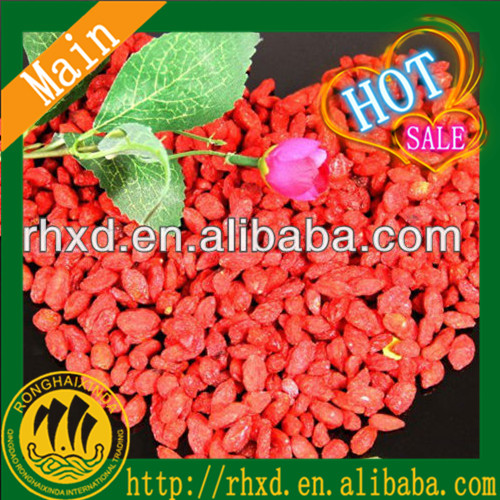 wholesale bulk goji berry delicious sweet red goji berry