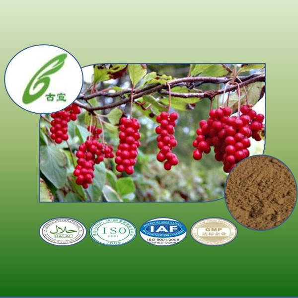 Schisandra Chinensis Extract Plant Extract