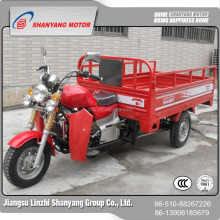 Newest 1.6m Large Loading Electric Tricycle Cargo Three Wheeler Rickahsw Cargo