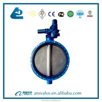 China Manufacturer DN40-1200 U Type Flanged Butterfly Valve with worm gear
