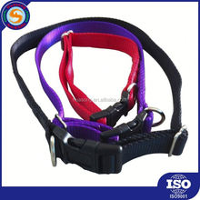 new arrival top grade various color led dog collar
