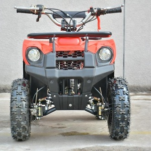 500-1000W Electric ATV 3 disc brake