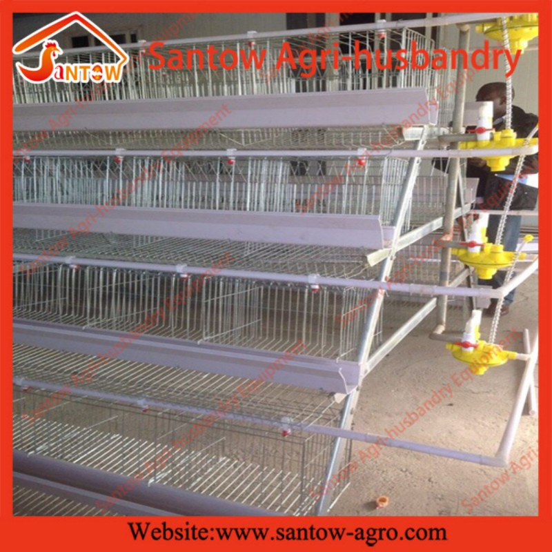 Antirust Design Layer Chicken Cages for Kenya Poultry Farm