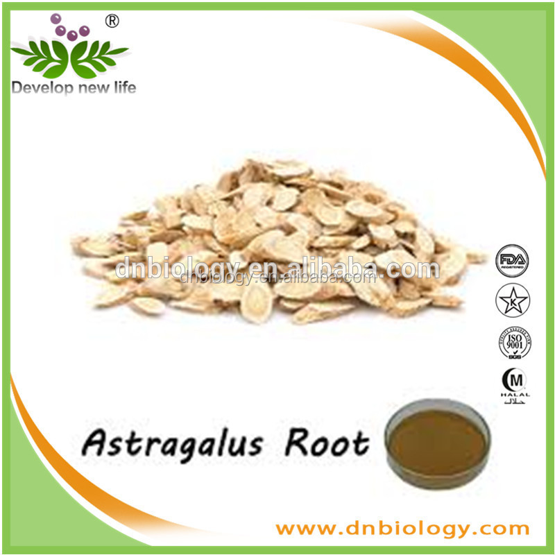 High Quality Astragalus Extract Plant Extract with Polysaccharides 50%