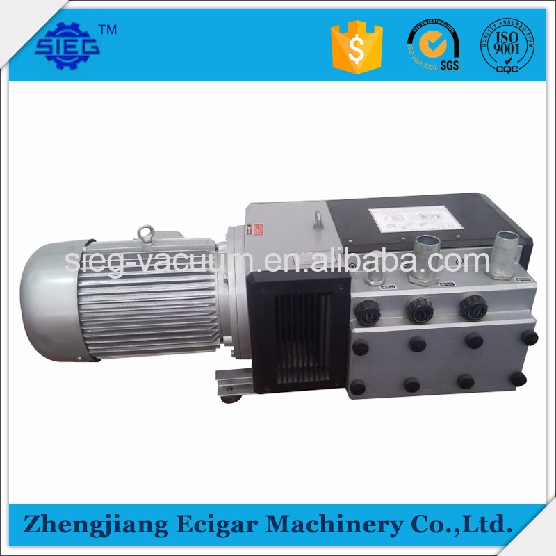 Hot Sale Vacuum Pump Rietschle from China