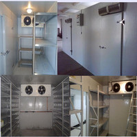walk in chest refrigerated freezer and chiller