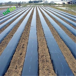 LDPE agricultural mulch covering film for cucumber planting