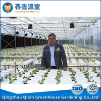 Advanced Agricultural Greenhouse Vegetable Greenhouse Materials