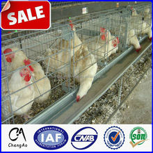 Small bird cage wire panels for laying hens/chicken layer cage price made in china