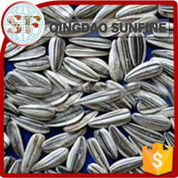edible sunflower seed market price